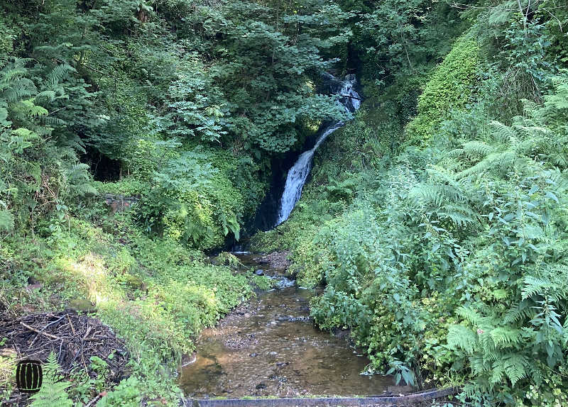 Glengoyne Waterfall