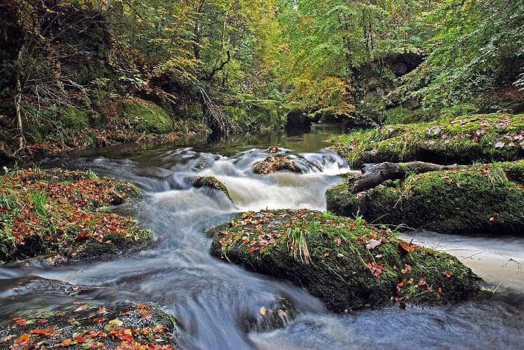 Scottish Fresh Water Stream